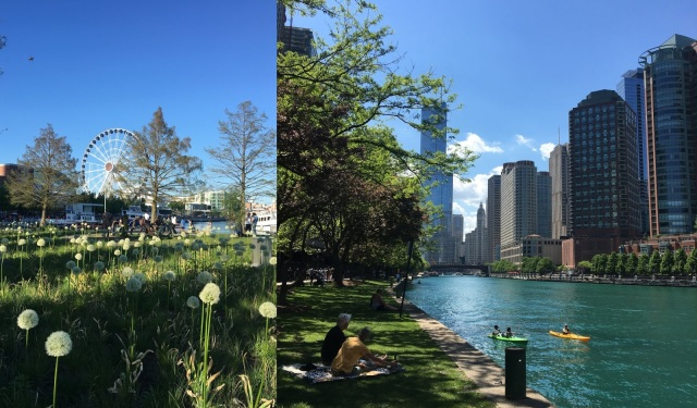 Navy Pier and River Walk